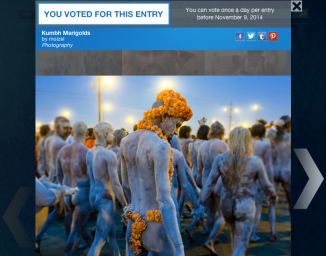 Did you vote yet? Click the photo to support my artwork and help me win an exhibit in SCOPE NYC & Art Basal!